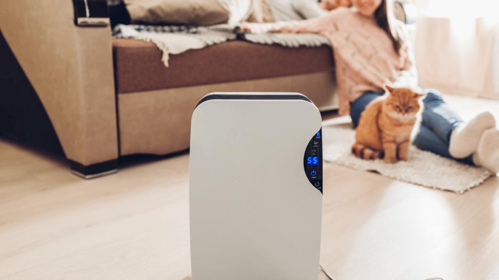 Best Air purifiers and germ exterminators